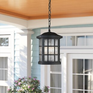Cayman 1-Light Outdoor Hanging Lantern