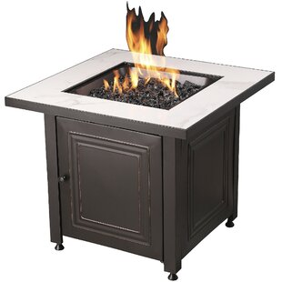 LP Stainless Steel Natural Gas Fire Pit Table