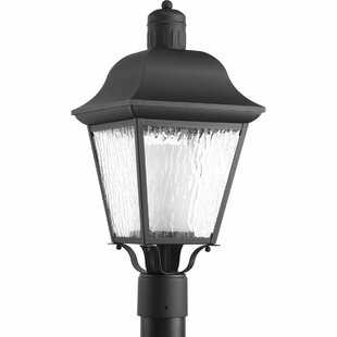 Alcott Hill Triplehorn 1-Light Lantern Head