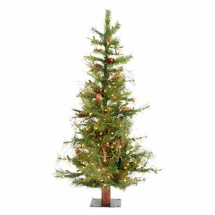 Ashland Fir 6 Green Artificial Christmas Tree With 450 Clear Lights Stand