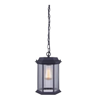 Rickards 1-Light Outdoor Hanging Lantern