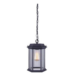Rickards 1-Light Outdoor Hanging Lantern