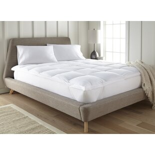 Price comparison 2 Down Alternative Mattress Topper By Alwyn Home