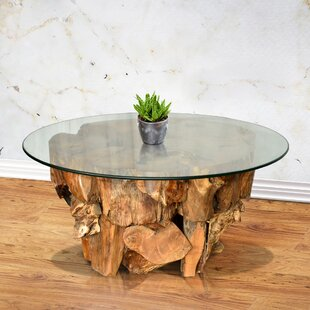 Ora Teak Root Coffee Table..