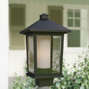 Savala Outdoor 1-Light Lantern Head by Winston Porter