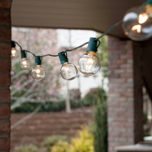 25-Light 25 ft. Globe String Lights
