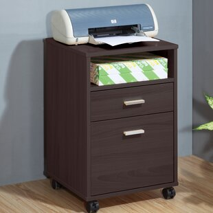 Mobile Printer Stand with Storage Cabinet by Sintechno