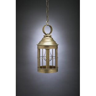 Aparicio 1-Light Outdoor Hanging Lantern