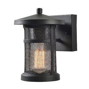 Renay 1-Light Outdoor Wall Lantern