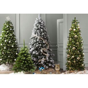 Pre lit christmas trees youll love wayfair spruce artificial christmas tree with clear lights aloadofball Gallery