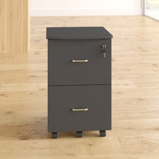 Valadez 2 Drawer Filing Cabinet By 17 Stories