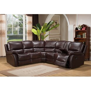 Darby Home Co Alverson Reclining Sectional
