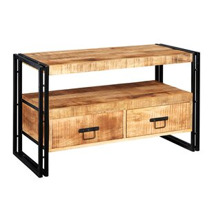Paige TV Stand For TVs Up To 40