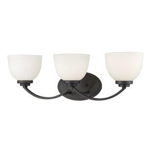 Best Kepner 3-Light Glass Shade Vanity Light By Winston Porter