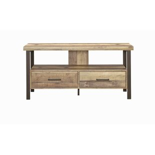 Williston Forge Carruthers TV Stand