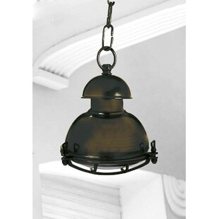 Chaya 1 Light Outdoor Pendant By Longshore Tides