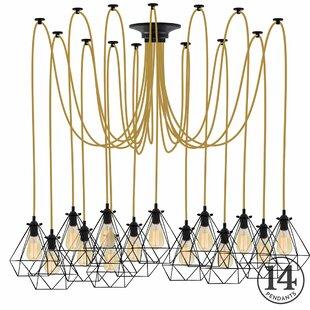 Esai 14-Light Cluster Pendant by Brayden Studio