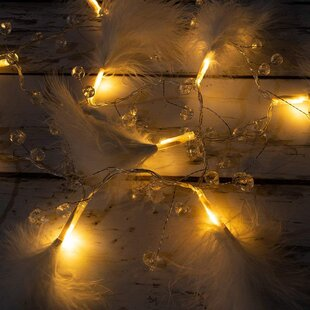 Best Reviews Kathleen LED Fairy Feather and Beads 10 Light Novelty String Lights By The Holiday Aisle