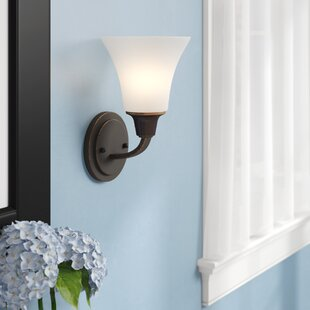 Irvona 1-Light Bath Sconce by Darby Home Co
