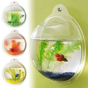 fish tanks aquariums you ll love wayfair