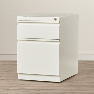 Latitude Run Brusnice 2-Drawer Mobile Ver..