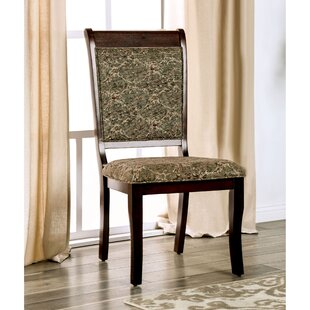 Nikolas Dining Chair (Set of 2) Hokku Designs