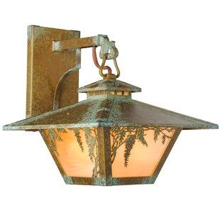 Angelos Wisteria Hook LED Outdoor Wall Lantern by Loon Peak