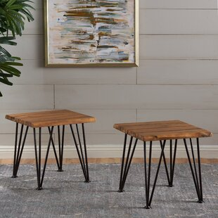 Union Rustic Lafrance End Table (Set of 2)