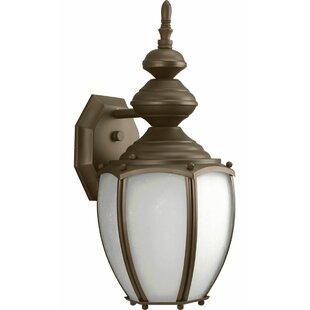 Alcott Hill Triplehorn 1-Light Aluminum Wall Lantern
