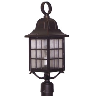 Archard 1-Light Lantern Head by Darby Home Co