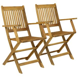 Haslemere Wooden Folding Garden Chair (Set Of 2) By Sol 72 Outdoor