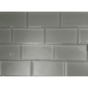 Frosted Elegance 3 x 6 Glass Peel & Stick Subway Tile in Gray by Abolos