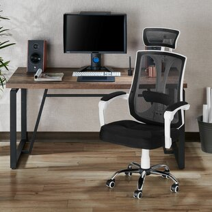 Fulcher Ergonomic Mesh Executive Chair by Latitude Run Purchase