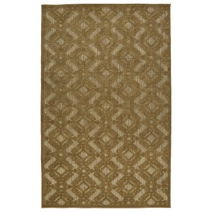 Covedale Light Brown Indoor/Outdoor Area Rug by Charlton Home