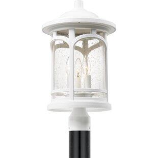 Fairfax 3-Light Lantern Head by Loon Peak