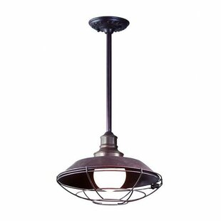 Deals Theodore 1-Light Outdoor Pendant By Darby Home Co