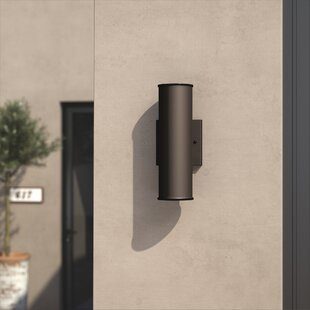 Amee 2-Light Outdoor Sconce