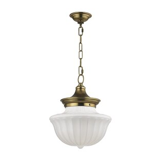 Great deal Emmett 1-Light Schoolhouse Pendant By Darby Home Co