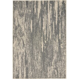 Lido Gray/Cream Indoor/Outdoor Area Rug