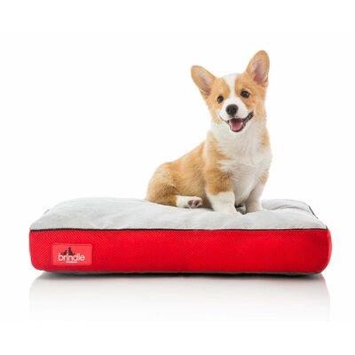 Medium Dog Beds You Ll Love Wayfair