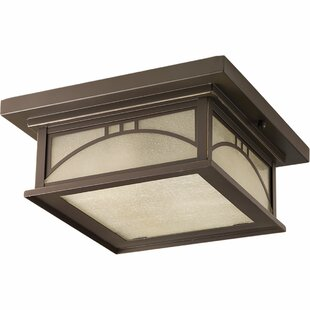 Shmuel 2 Light Outdoor Flush Mount