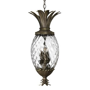 Searching for Terry 4-Light Outdoor Pendant By Beachcrest Home