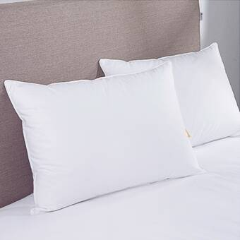 Arsuite Gilkey Hotel Feather And Down Chamber Pillow Reviews Wayfair