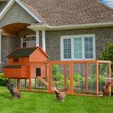 Camara Deluxe Outdoor Chicken Coop with Nesting Box and Chicken Run