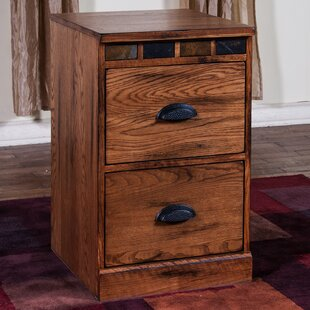Loon Peak Fresno 2 Drawer Accent Chest