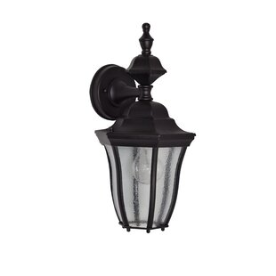 Salesville 1-Light Outdoor Wall Lantern