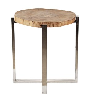 Ibolili Stainless Frame End Table