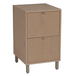 Latitude Run Southville 2-Drawer File Cabinet