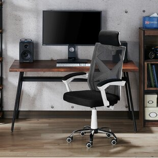 Franck Ergonomic Mesh Executive Chair