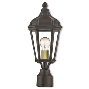 DeMotte Outdoor 1-Light Lantern Head by Darby Home Co